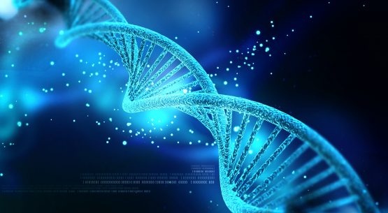 'Big Brother is Watching': The Implications of the Proposed collection of DNA Data in the Registration of Persons