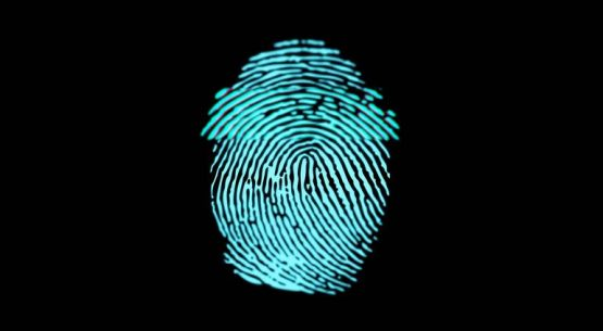 Biometric technology, elections, and privacy