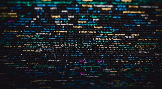 The Impact of the AI Divide on Vulnerable Groups
